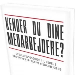 Gratis kapitel af bog om arketyper  - Kender du dine medarbejdere? Af Pernille Hjortkjær