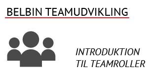 Belbin Teamudvikling - en introduktion til teamroller, teamudvikling og teameffektivitet
