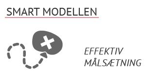 vaerktoejskassen-smart-modellen